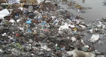 Picture From A Video Exposing The Trash In Haiti Streets
