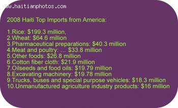 Top Products Exported by Haiti