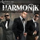 Great Haitian Band, Harmonik
