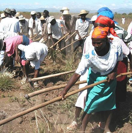 Kombit involving Haitian Women