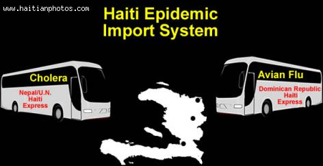 Haiti and the threat of Avian Flu (H1N1 virus) from the Dominican Republic