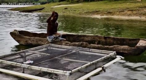 Fish Farming in Boucan Carre