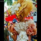 Carnaval des Fleurs 2012, carnival of color