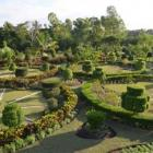 1987 Constitution Mandates a National Botanic Garden