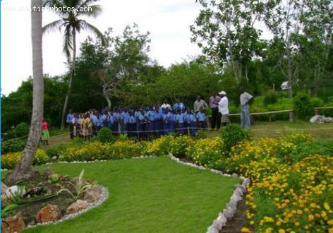 Agronomist Scolds Haiti Government for Biodiversity Ignorance