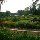 Haiti Government to Meet 2015 Goal for National Botanical Garden