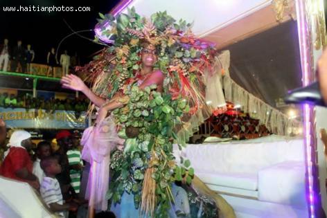 Carnaval des Fleurs 2013, security
