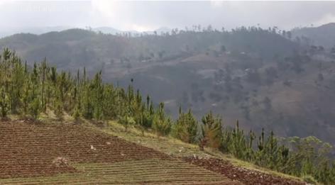 Fonds-Verrettes near Dominican Republic, Haiti