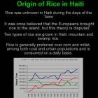 Origin of Rice in Haiti
