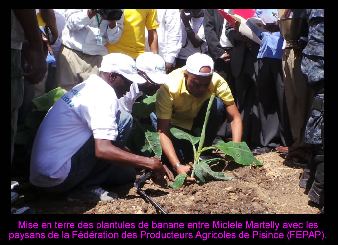 Michel Martelly Planting Banabas in Trou-du-Nord
