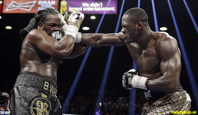 Deontay Wilder beat Haitian Bermane Stiverne for the heavyweight world championship