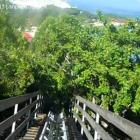 LDragon's Tail Coaster In Labadee Haiti