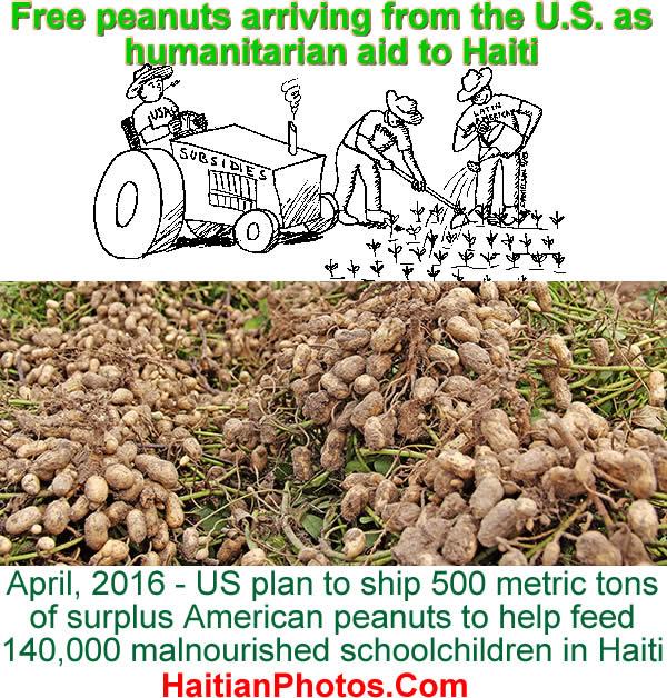 Subsidized U.S. peanuts as humanitarian aid to Haiti
