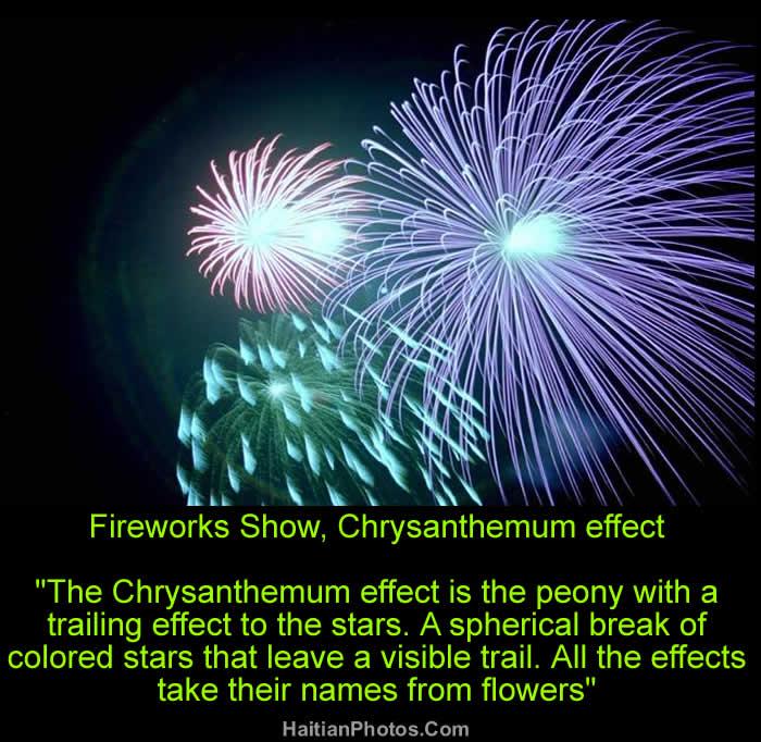 Fireworks Show, Chrysanthemum effect