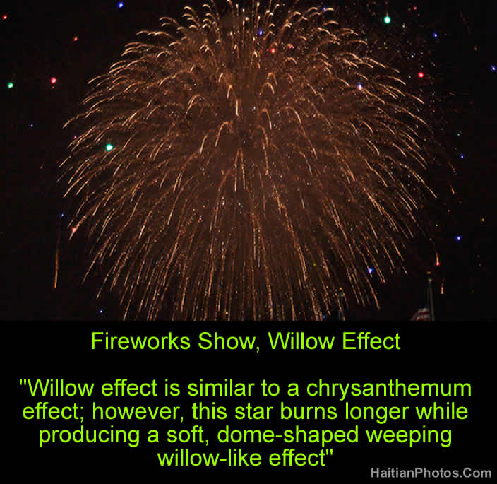 Fireworks Show, Willow Effect