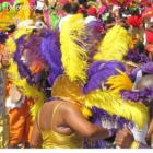 Carnival In Miami, A Dispaly Of Color